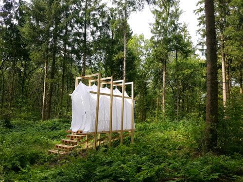 Steigerhout Onbehandeld ca 3x20x400CM photo review